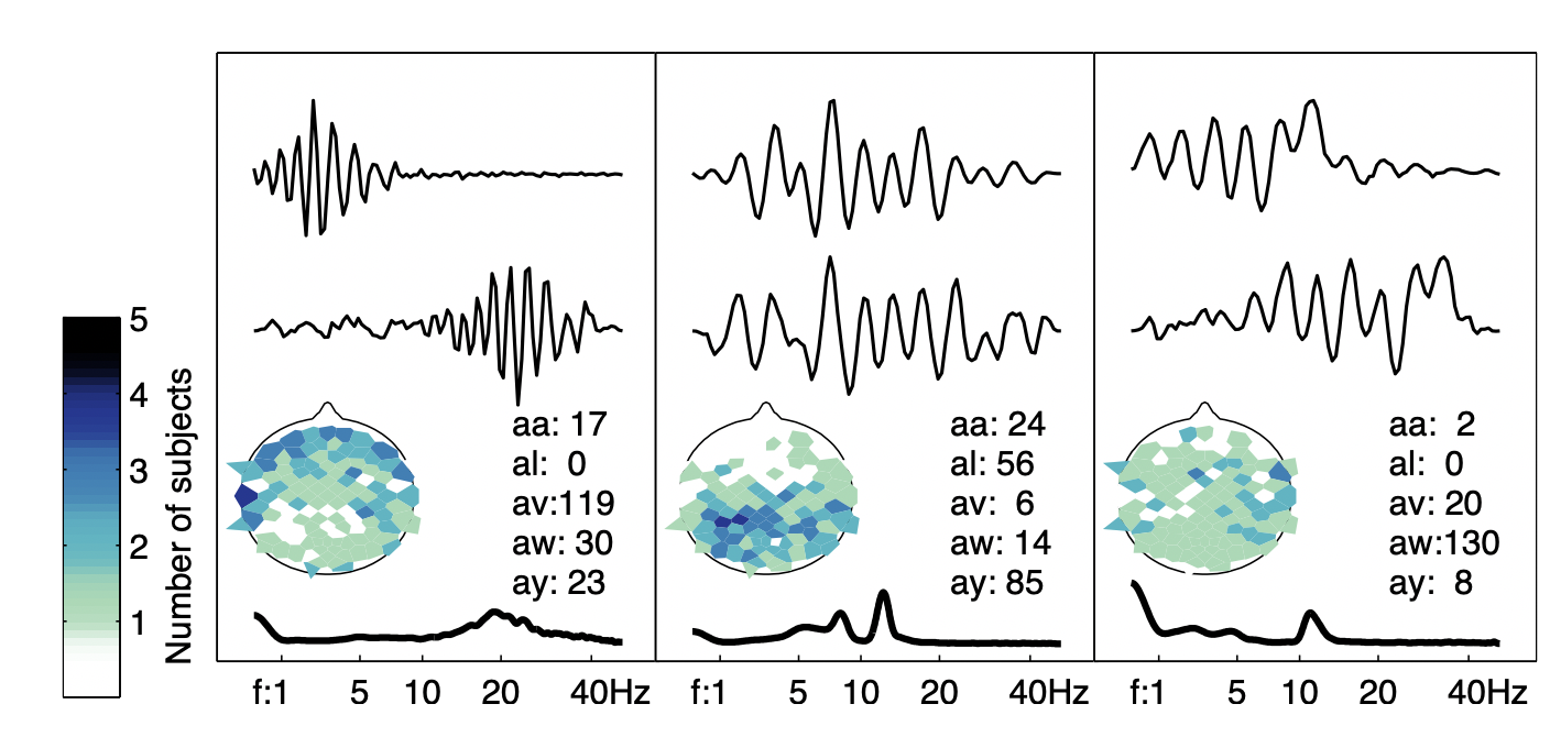 Each cluster of waveforms is described by its centroid, the waveform nearest the centroid, the spectrum of the centroid, and the spatial distribution of the originating electrodes for the cluster waveforms.